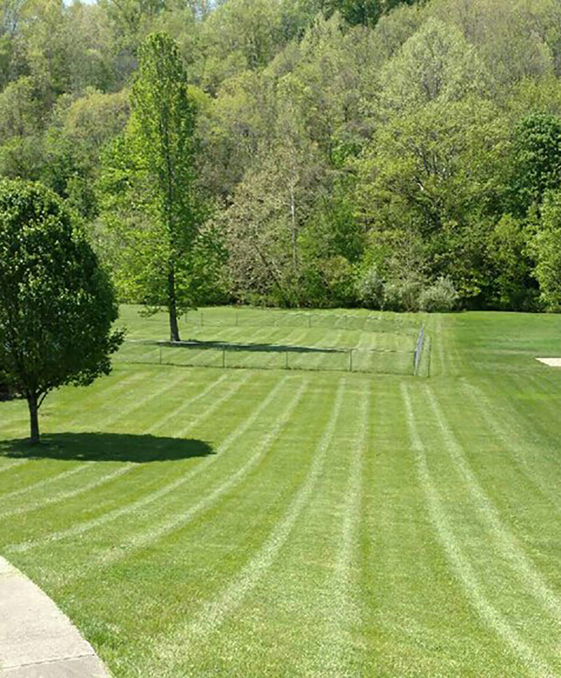 Grass Busters Lawn Care Provides Commercial Monthly Lawn Care And  Landscaping Maintenance For ...