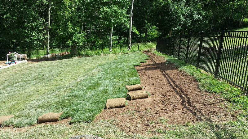 New Lawn Installation Services Residential Lawn Care Landscaping